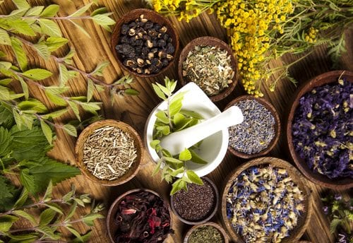 herbs for leg pain